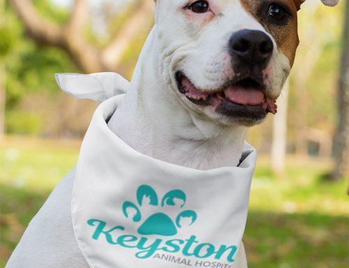 The Company Newsletter of Keystone Animal Hospital